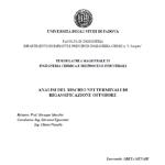 Greta Munari - Analisi del rischio nei terminali di rigassificazione offshore