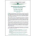 Julian Wieczorkiewicz - Abolishing Oil Indexation in Gas Contracts: Is it the cure-all?