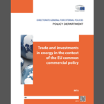 Trade and investments in energy in the context of the EU common commercial policy